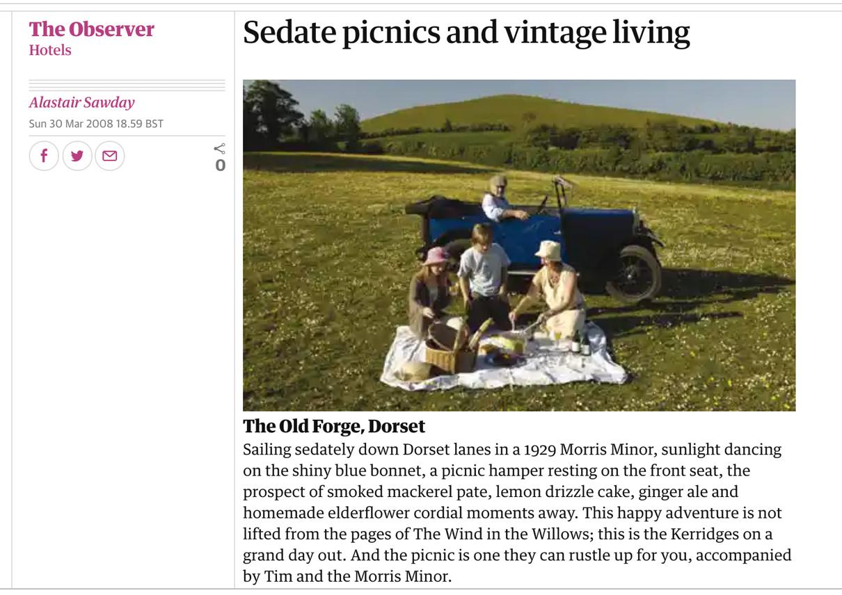 Sedate-Picnics-Vintage-Living