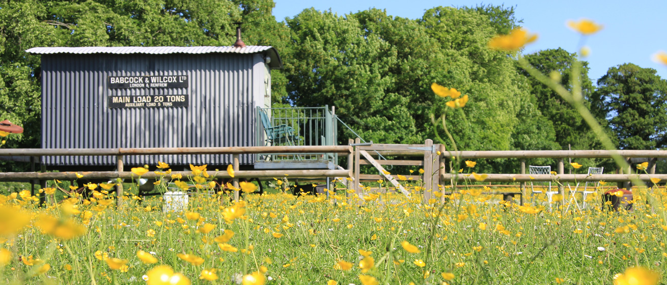 Glamping-Hut-in-Dorset