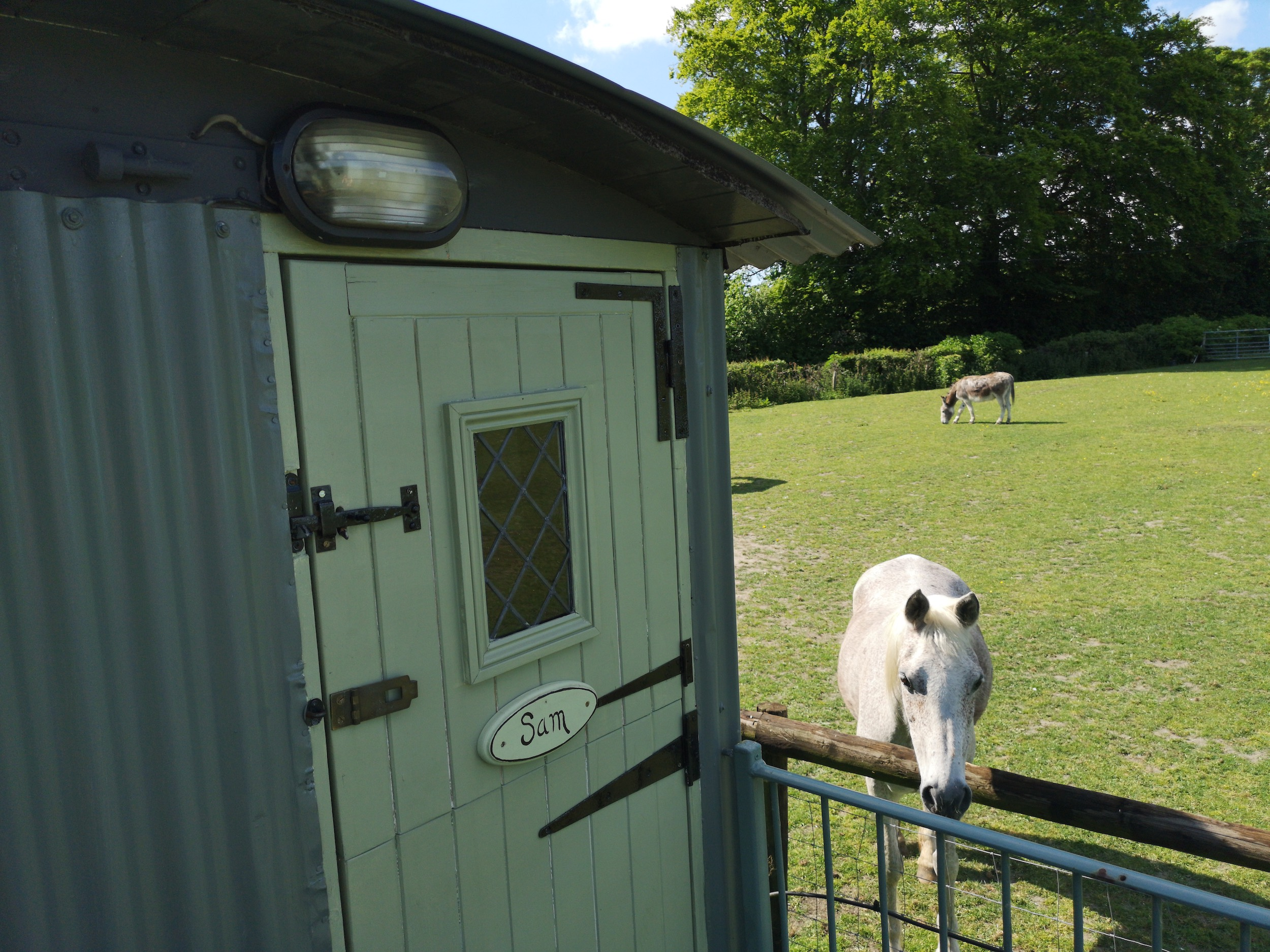 The-Old-Forge-Shepherds-Hut